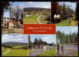 AK Luftkurort Fleckl, im Fichtelgebirge, Mehrbild   67/47