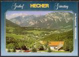 AK Im Kurgebiet Reichenau, Gasthof Hecher   26/50