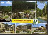 AK Staatsbad Wildbad, Mehrbildkarte    56/6