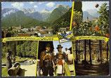 AK Grüsse aus Lofer, Mehrbildkarte    54/30