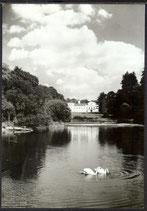 AK Lázně Kynžvart Schloss im Park    y27