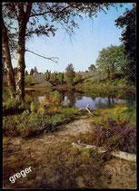 AK Naturschutzgebiet Lüneburger Heide   66/40