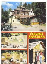 AK Mariánské Láznì, Mehrbildkarte     51/35