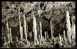 AK Bärenhöhle – Karlshöhle bei Erpfingen    71/31