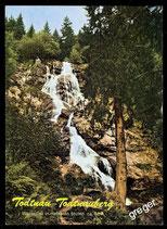 AK, Todtnauberg Wasserfall  73/42