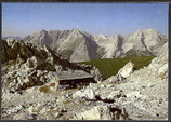 AK Nordkette gegen Karwendelgebirge    49/41
