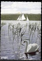 AK Der Albatros unterm Klosterberg Andechs Obby.     61/45