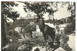 AK Karlovy Vary, Heilanstald Richmond     51/50