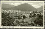AK Friedrichroda Thür. Panorama  3/25