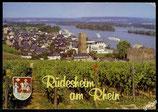 AK Rüdesheim, Blick auf Rüdesheim und Rhein   68/30