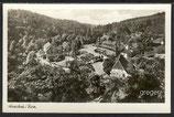 AK  Panorama Alexisbad Im Harz    79f
