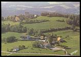 AK Viechtach, Burggasthof Sterr      72/38