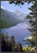 AK Plansee in Tirol     52/31