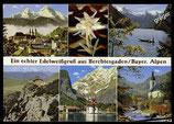 AK Mehrbildkarte von Berchtesgaden mit echtem Edelweiß     71/11