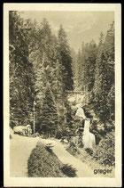 AK Der Wasserfall in Triberg    13/46