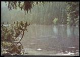 AK Plöckensteinsee –Böhmerwald    61/6