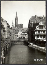 AK Straßburg Pflanzbad, Blick auf Münster     49p