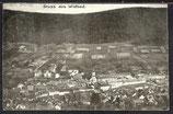 AK D. Reich von 1906 Gruß aus Wildbad, Panorama   32/13