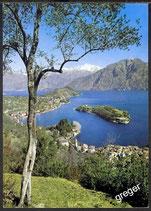 AK Comer See, Sala und Comacina Insel    42/22
