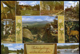 AK Mehrbildkarte vom Fichtelgebirge   69/45