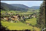 AK Klosterreichenbach im Schwarzwald, Panorama    69/31