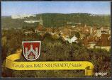 AK Gruß aus Bad Neustadt, Saale, Panorama    75p