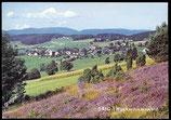 AK Saig, Hochschwarzwald    42-l