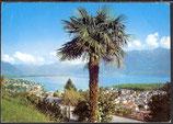 AK Locarno, Lago Maggiore Panorama   46/42