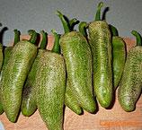 Jalapeño Potato Farmers Market - Sachet 10 graines