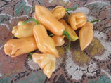 Habanero Peach - Sachet 10 graines