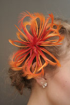Federblüte orange rot