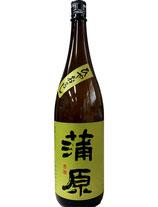 蒲原 純米吟醸 ひやおろし(五百万石)