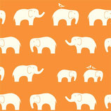 BIO-BW Birch Fabrics Elefanten orange
