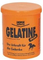 Gelatine Plus