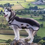 Rambo Sport Series Dog Rug Horseware