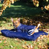 Amigo Dog Bed Horseware