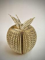 Buch-Apfel