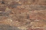 """Kurkplaat """"woestijn"""" 30 x 60 cm."""