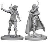 Pathfinder Battles: Deep Cuts Unpainted Miniatures - Human Female Rogues