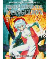 MANGA NEON GENESIS EVANGELION