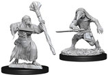 Dungeons & Dragons: Nolzur's Marvelous Unpainted Miniatures - Kenku Adventurers