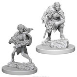 Dungeons & Dragons Nolzur's Marvelous Unpainted Miniatures: Drow