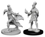 Pathfinder Battles: Deep Cuts Unpainted Miniatures - Elf Female Sorcerers