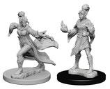 Pathfinder Battles: Deep Cuts Unpainted Miniatures - Elf Female Sorcerers
