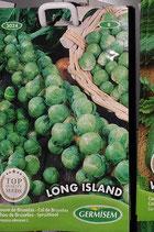 """Chou de BXL """"Long Island"""""""