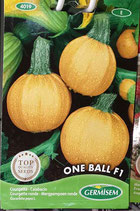 "Courgette ""One Ball F1"""