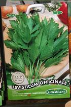 """Livèche """"Officinale"""""""