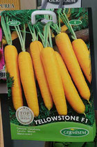 "Carottes ""Yellowstone F1"""