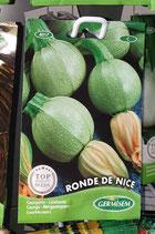 """Courgette """"Ronde de Nice"""""""