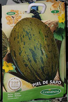 "Melon ""Piel de Sapo"""